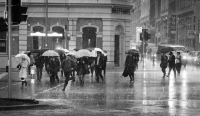 3. A Rainy Day in Perth by Toni Segers